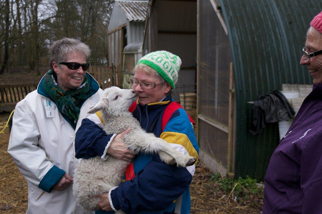 Kvinne koser med lam