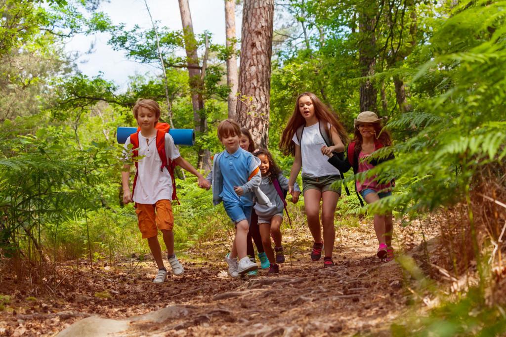 Sommerleir med mange barn ute i skogen. Foto