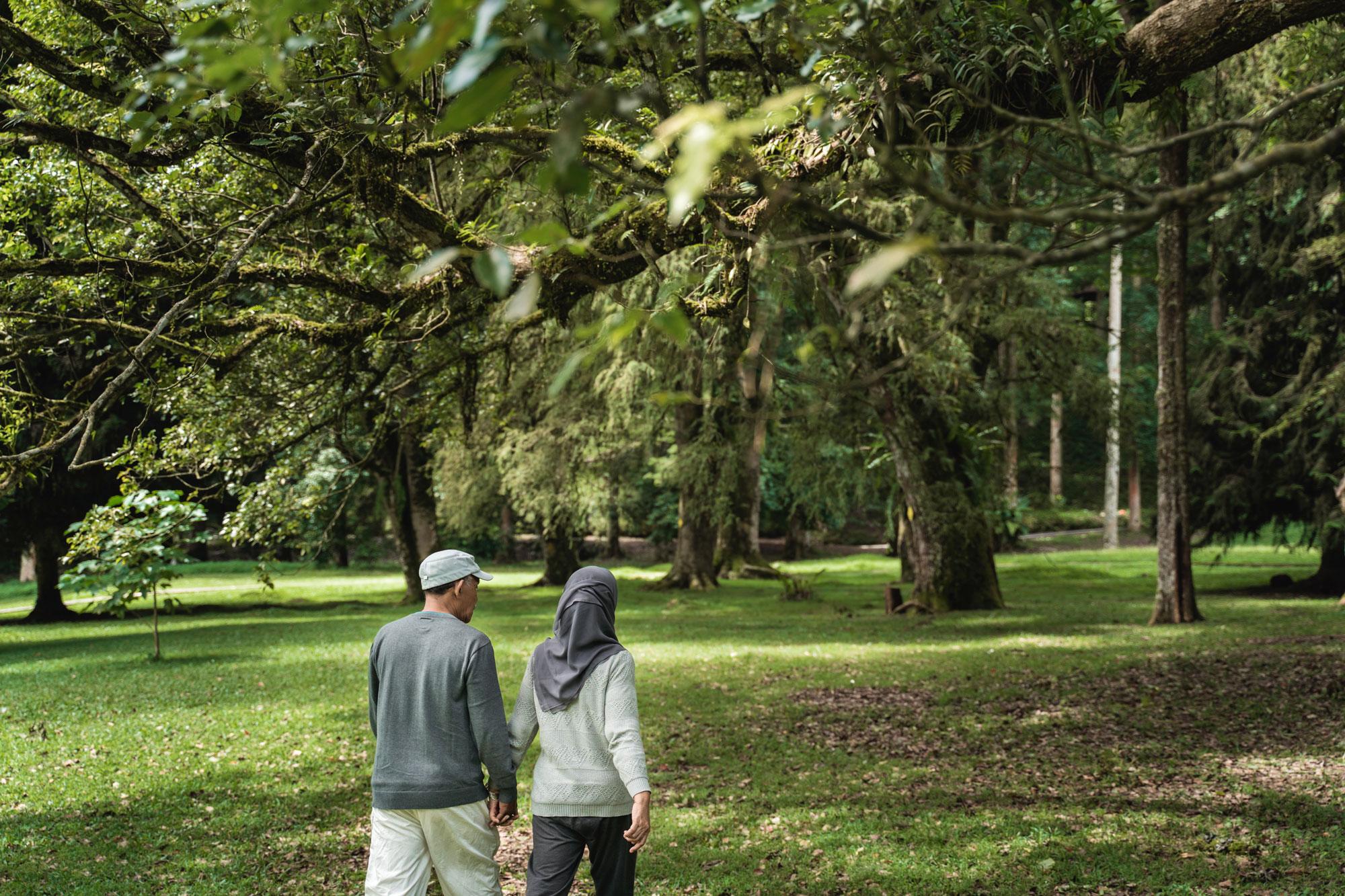 Eldre minoriteter går tur i skogen. Foto